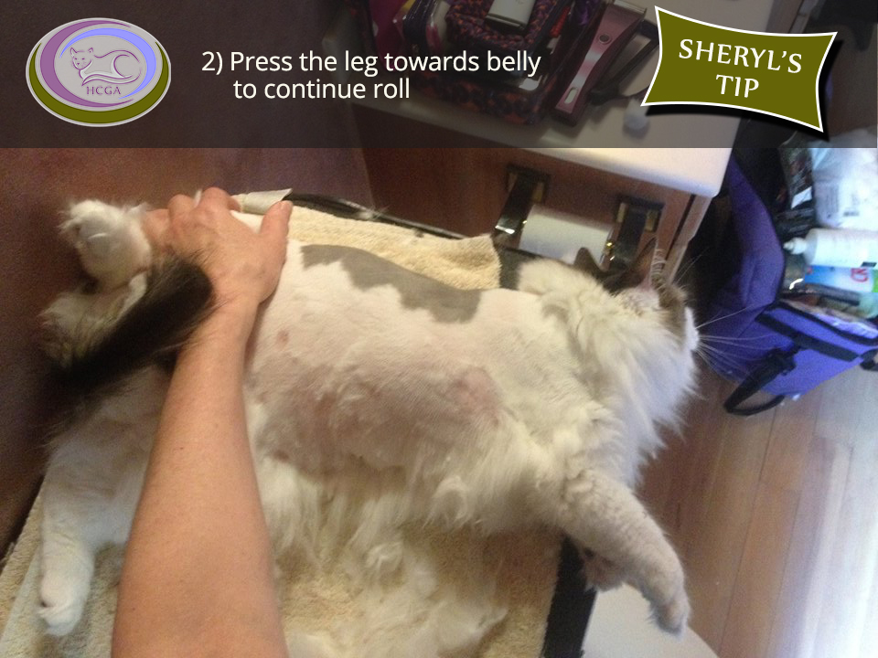 2) Press the leg towards belly to continue roll